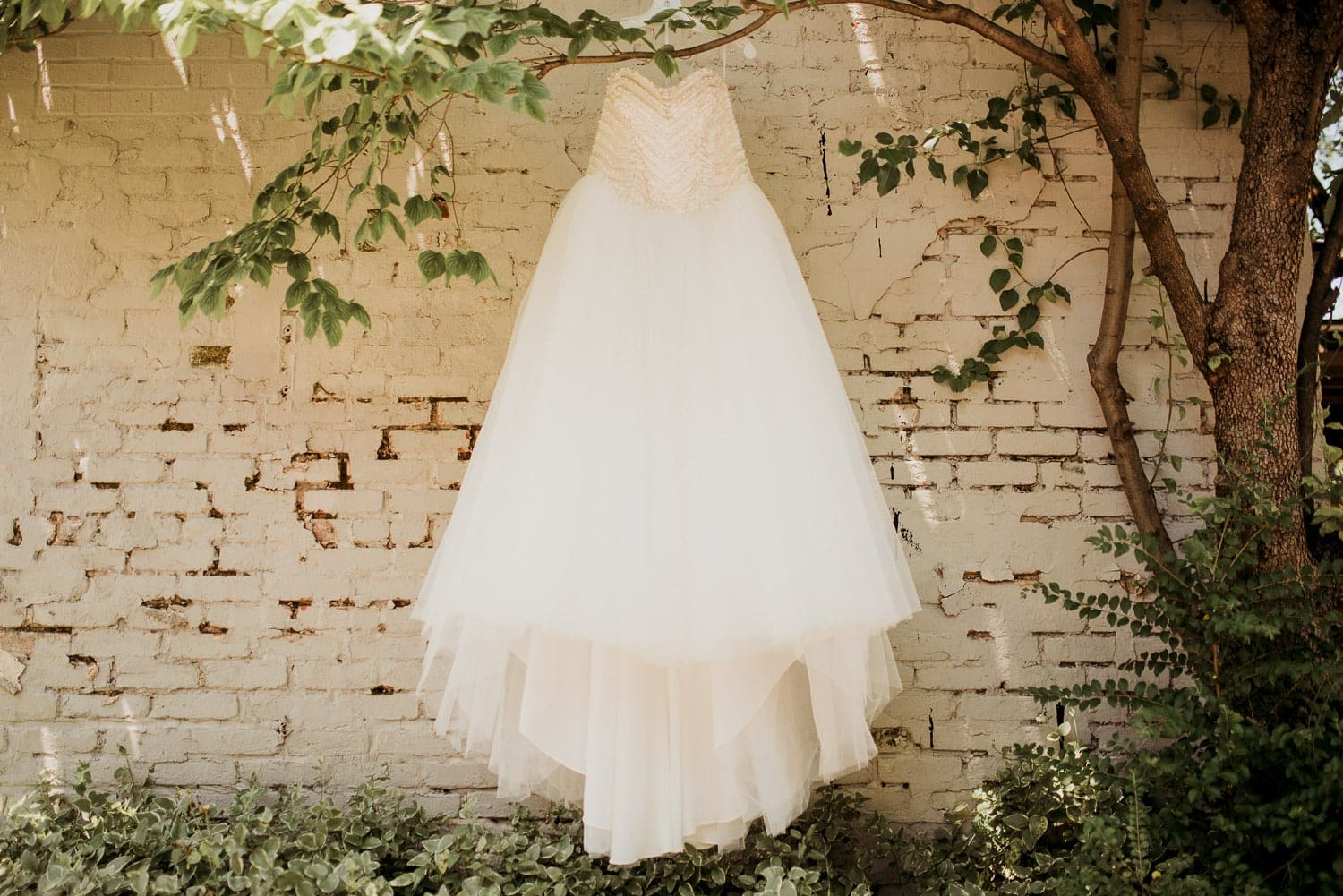 The brides dress hung from a tree branch agains a white brick wall